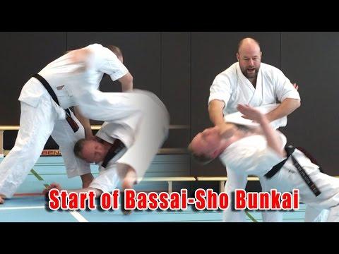 Practical Kata Bunkai: Start of Bassai-Sho