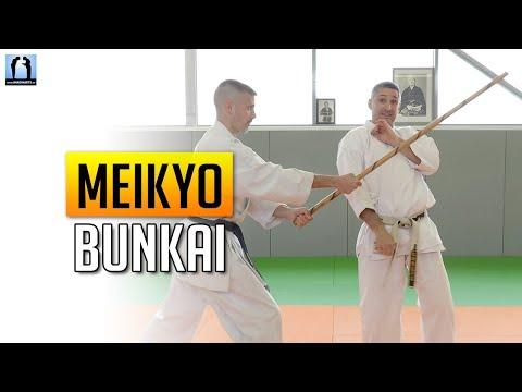 Bunkai Meikyo - Karate avec Lionel Froidure