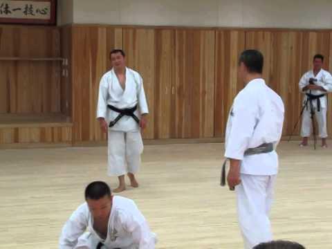 Kagawa-sensei demonstrating the jump - sankaku tobi - from Kata Meikyo